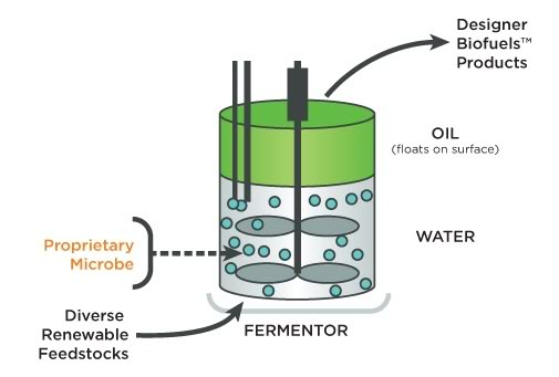 is petroleum renewable